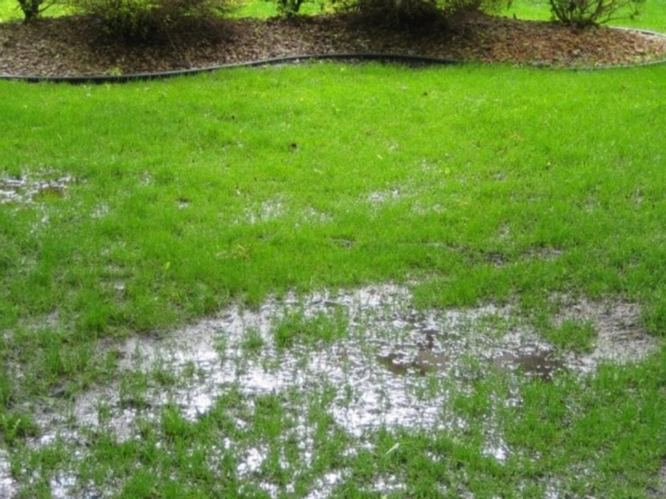 Moisture Issues From Water Stagnation
